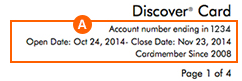 Account Information - Credit Card Statement