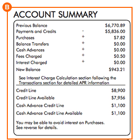 Account Summary Credit Card Statement