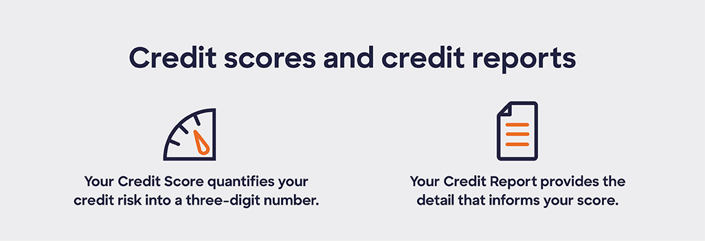 Credit Score and reports explained