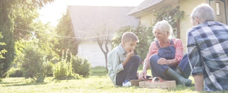 Grandparents sharing fresh-picked strawberries with grandson